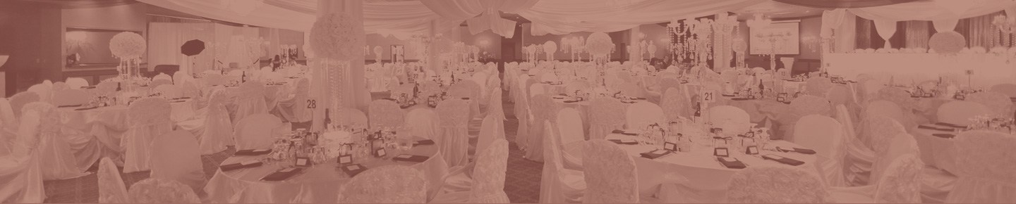 Wedding Venues and Receptions